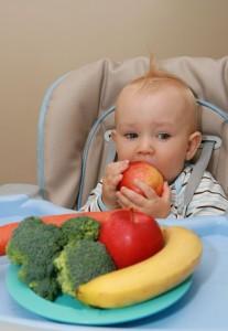 baby food2