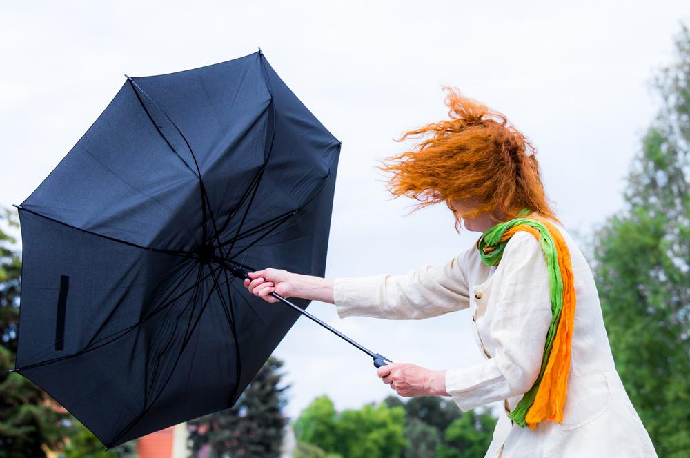 Fenomene ale naturii -Vântul și furtuna