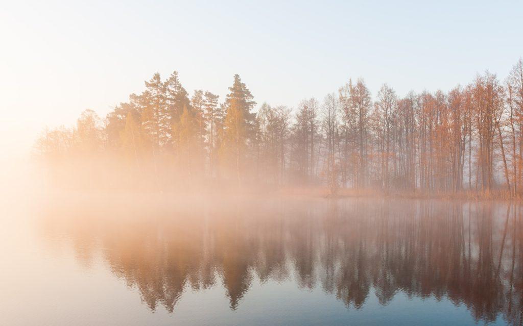 Ceața de evaporație