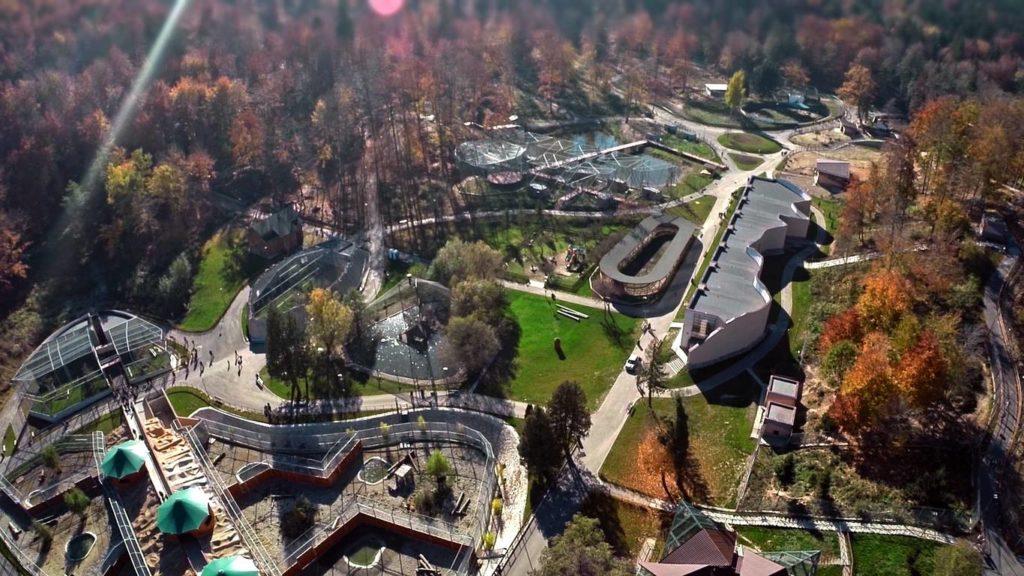 Locuri de vizitat in Brasov-Gradina Zoologica