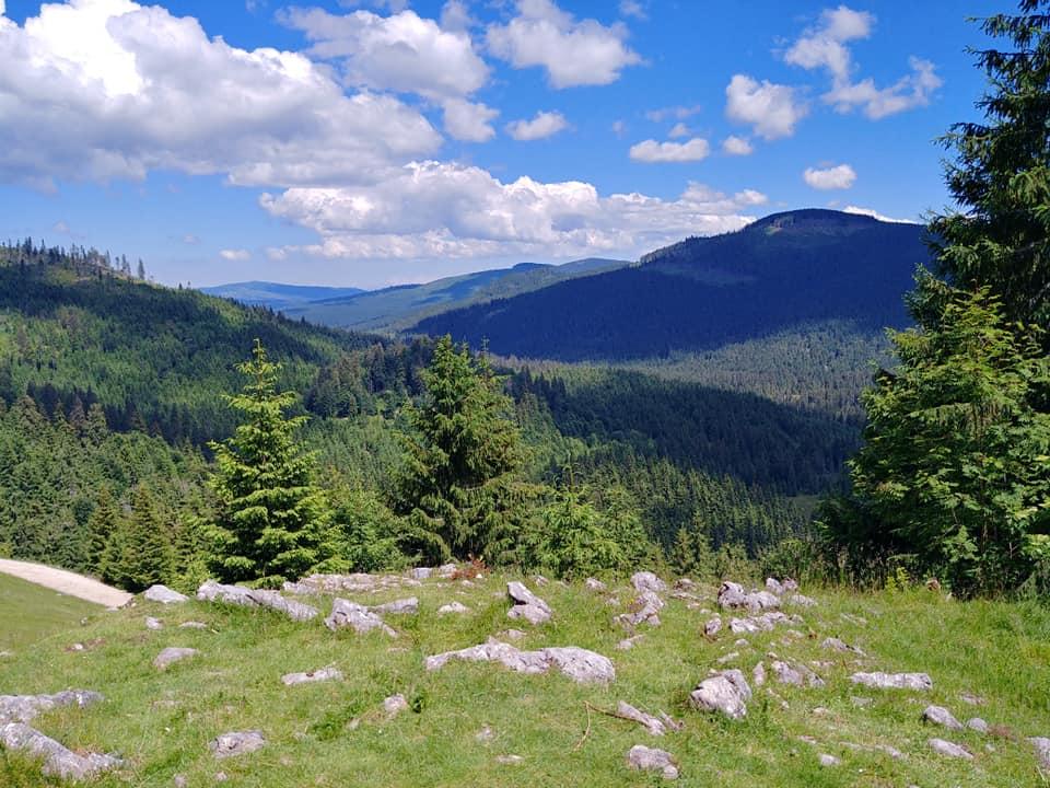 Locuri de vizitat în România cu copiii - Parcul Natural Apuseni