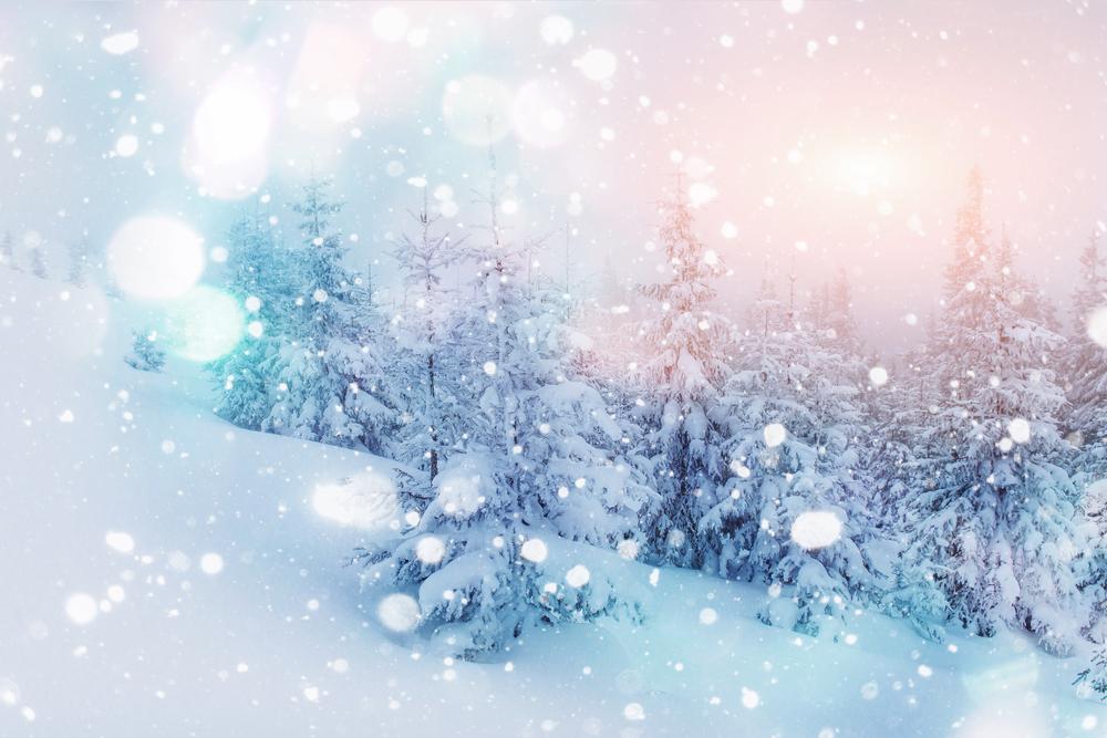 Zăpada, fulgi de nea